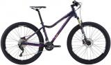 /images/fabrik/bikes/592873.jpg