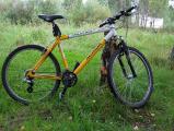 /images/fabrik/bikes/IMG-20180807-WA0004.jpg