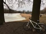 /images/fabrik/bikes/IMG-20191103-WA0000.jpg