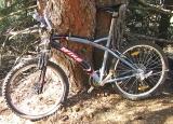/images/fabrik/bikes/IMGA0281_.jpg