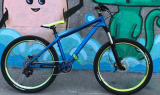 /images/fabrik/bikes/IMG_13411.jpg