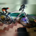 /images/fabrik/bikes/IMG_20180821_141205.jpg