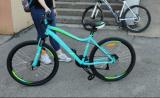 /images/fabrik/bikes/IMG_20190614_223210.jpg