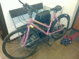 /images/fabrik/bikes/wpnRBBCCF5g.jpg